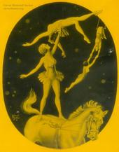 cirque-nocturne.jpg