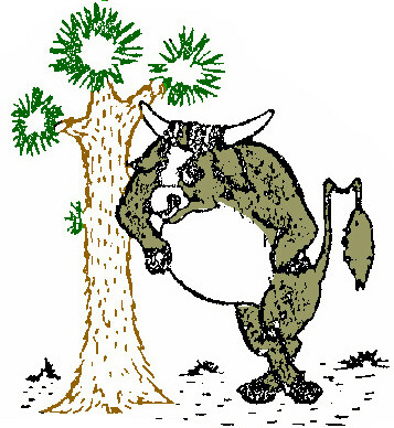 __cocky_the_bull_w_tree_color.jpg