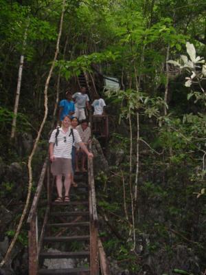 monkey-trail-puerto-princessa