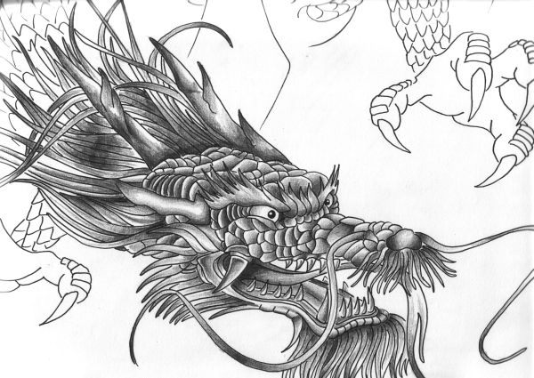 Tattoo Ideas · dragon-tattoo