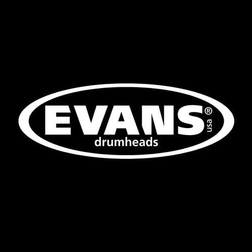 steve+such+evans